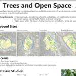 Trees and Open Space Visual