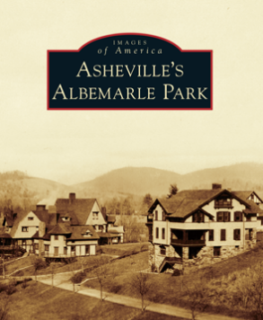 Albemarle Park Book Cover